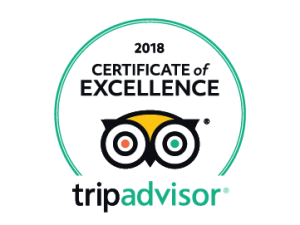 2018Certificate of excellence UK
